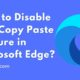 How to Disable URL Copy Paste Feature in Microsoft Edge